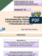PLANIFICACION, ORGANIZACION DE LOS SERVICIOS DE SALUD