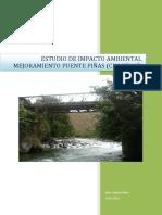 224773171-EIA-PINAS.pdf