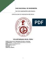 voluntariado del peru 2017.docx