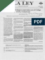 PRIVILEGIOS EN EL NUEVO CODIGO C.C Y C..pdf