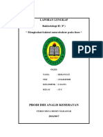 Sampul Bakteriologi ( p )