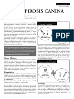 Informe leptospirosis.pdf