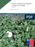 Cultivo Manual Melon
