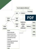 Esquema Analítico Evolución Biológica