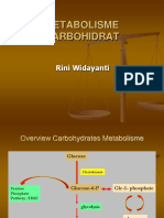 7_Metabolisme Karbohidrat Vokasi2015