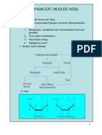 7 Slide Asam Nukleat Atau Nucleic Acid 2