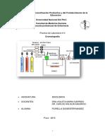 Practica de Laboratorio 3 - Cromatografía
