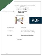 Practica de Laboratorio 9 - Perfil Lípidico