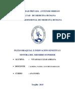 314262397 Monografia Plexo Braquial1