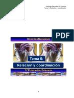 5_CCNN_TEMA5
