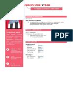 9 contoh curriculum vitae tampilan cantik menarik dan sederhana file word
