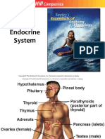 10. Endocrine System