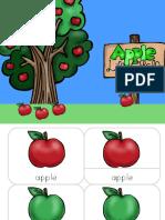 Apple Life Cycle 2