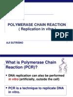 5. PCR-CUD