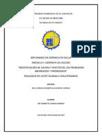 """Identificacion de Causas y Efectos de Los Problemas Abordados y Priorizados"""""""