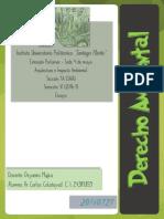 derechoambientalcaco-160803135943.pdf