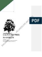 Trees in Karachi