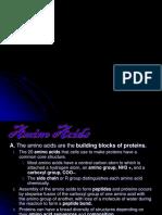 Protein 2012 B.ppt