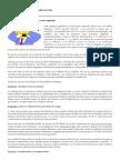 10 Estrategias Para Defender a Un Culpable de José María de Pablo