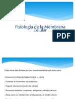 Fisiologia Membrana