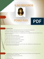 Presentación1 hoja de procesos.pptx