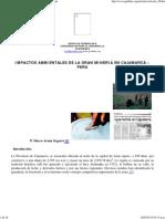 Artículo 28 - Impactos Ambientales de Minera Yanacocha.pdf