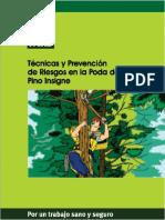 tecnicas-y-prevencion-de-riesgos-en-la-poda-de-pino-insigne.pdf