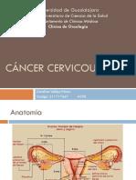 CaCervicouterino Oncologia