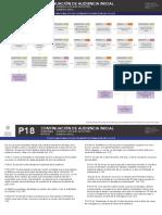 Audiciencia_Inicial_Vinculacio_n_Proceso_Microflujo.pdf