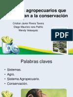 Sistemas Agropecuarios Que Contribuyan a La Conservación