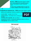 6 DOM, Virus, Bakterija