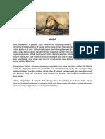 profil hewan