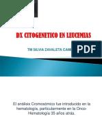 CITOGENETICA Y LEUCEMIAS.pdf