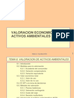 Valoracion Economica de Activos Ambientales
