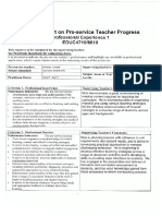 interim report page 1