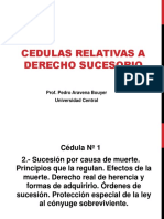Diapositivas Sucesorio 1a parte (2).ppt