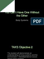 8_6ABodySystems