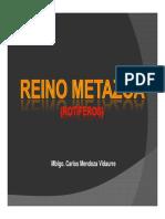 Reino Metazoa - Rotiferos