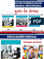 Enfoque de Las Areas-dcn 2017