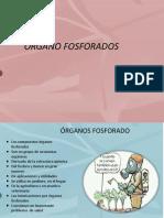 Organos Fosforados