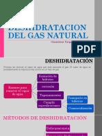Clase 10. Deshidratacion Del Gnatural