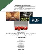 CER-Maule.pdf