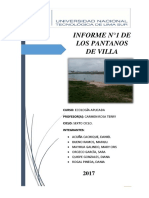 Informe Pantanos de Villa