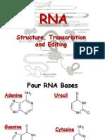 RNA.ppsx
