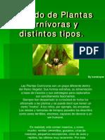 154975423-Guia-Plantas-Carnivoras.pdf