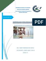 Sistemas Coloidales-composición Informe