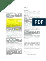 INFO DE AUDITORIA.docx