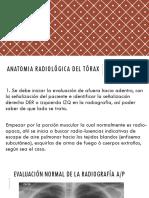 13. ANATOMIA Radi Logica Del t Rax Anato Radio (1)