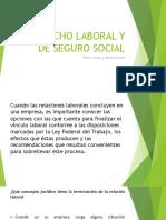 Derecho Laboral y de Seguro Social Terminacion