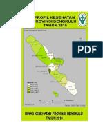 07_Bengkulu_2015.pdf